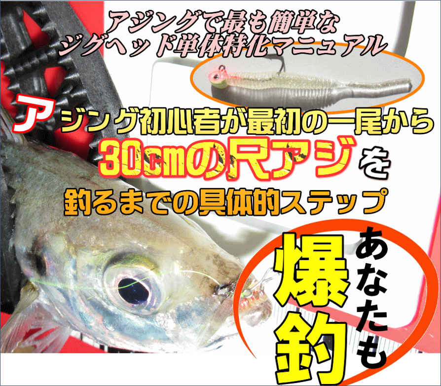 アジング初心者が最初の一尾から30cmの尺アジを釣るまでの具体的ステップ