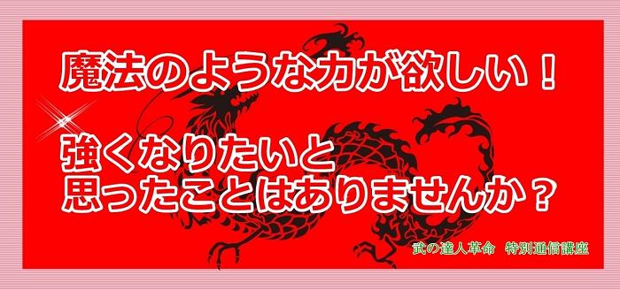 武の達人革命~特別通信講座~