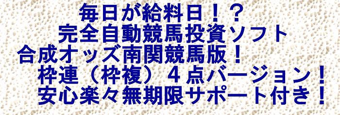 完全自動競馬投資ソフト合成オッズ南関競馬版!枠連(枠複)4点バージョン