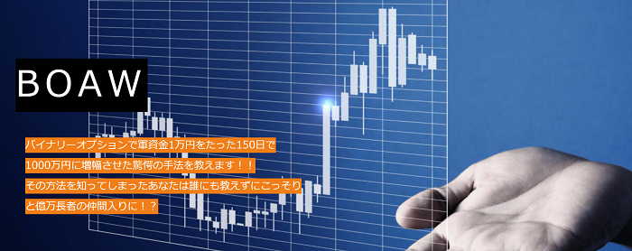 BOAW〜1万円が1000万円になった軌跡~